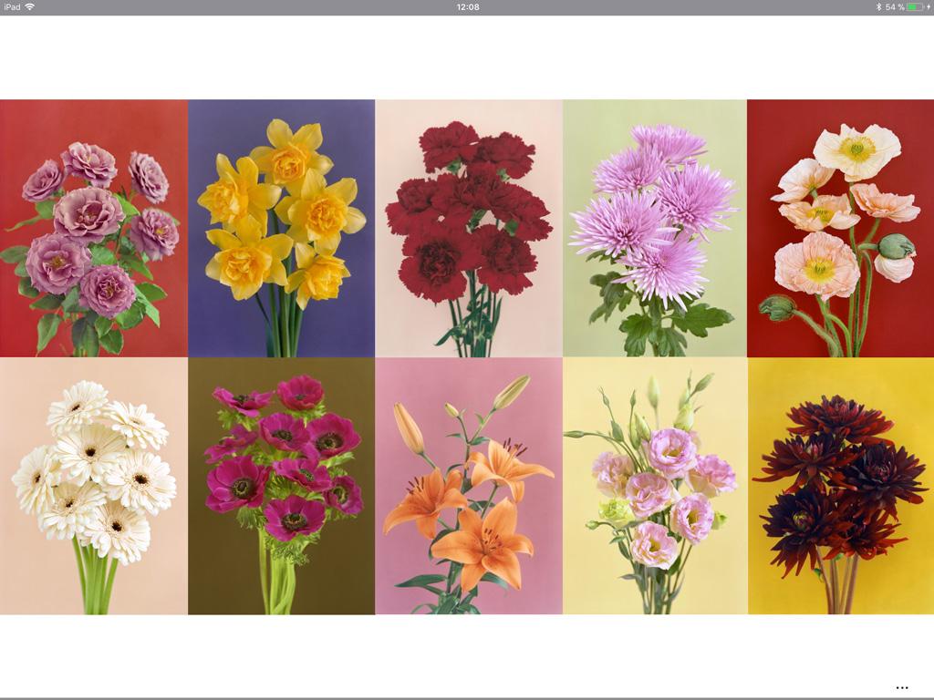 Carole Fékété, Les fleurs