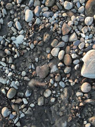 Romain Sein, Un cœur de pierre