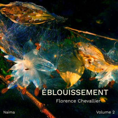 Florence Chevallier, Éblouissement, volume 2