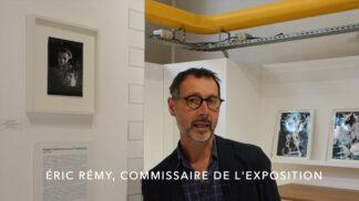 Éric Rémy, commissaire de l'exposition Roger Catherineau ou l'irréalisme